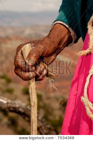 Hand Of Old Farmer Woman