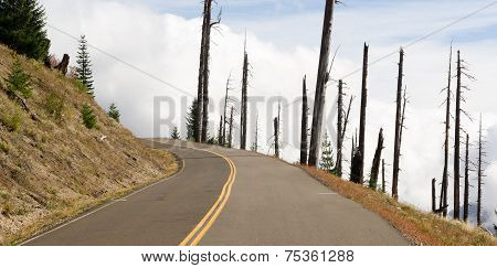 Open Road Damaged Landscape Blast Zone Mt St Helens Volcano