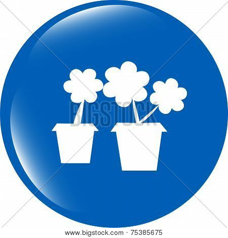 Flowerpot With Plant - Web Icon Isolated