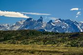 stock photo of pain-tree  - Amazing view of grassy plains and snowy mountains of Torres del Paine National Park