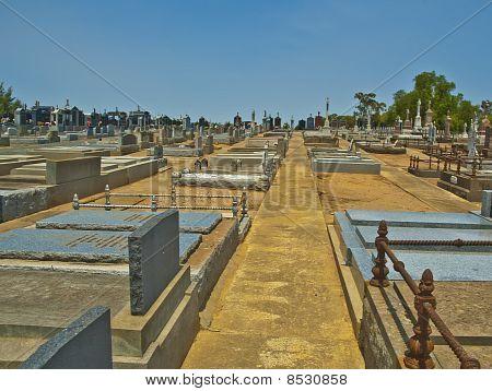 Desert Cemetery in the Australian Outback