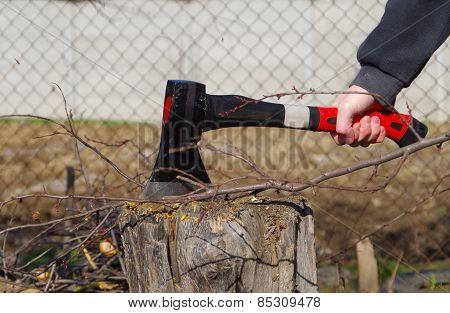 Ax And Tree Stump