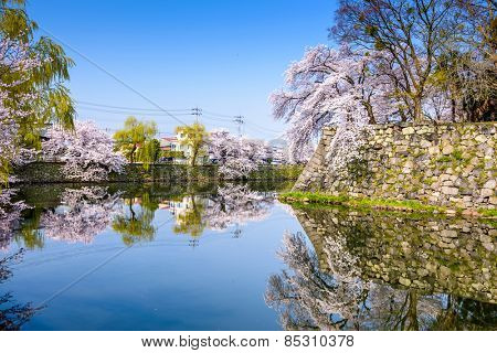 Hikone, Japan at the castle moat during spring season.