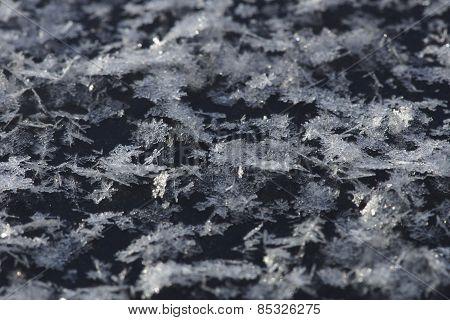 Frost On Car Hood