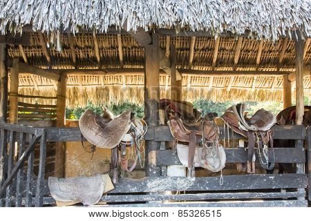 Saddles sit on a fence in the Caribbean