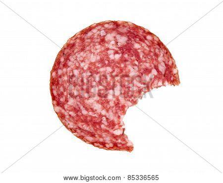 Slice of salami sausage