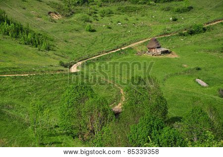 Green Vibrant Pasture. Barn With Thatched Roof