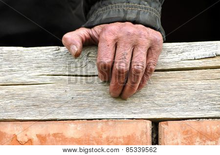 Wrinkled Hand Of A Senior Man