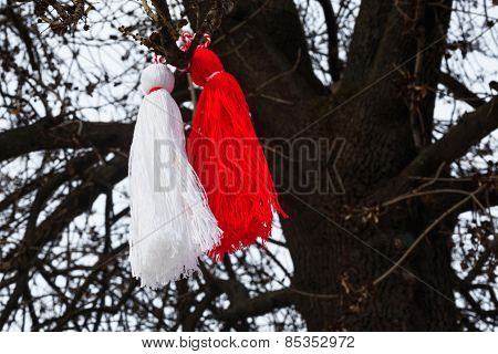 Bulgarian Martenitsa On A Tree