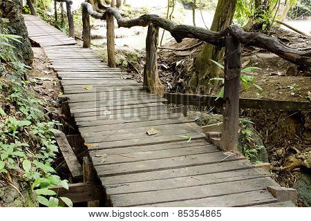 Walkway Of Wooden Planks Through The Forest