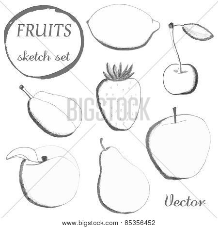 Set of fruits in sketch style.Freehand drawing.