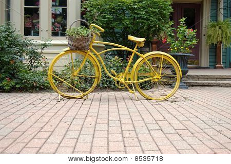 Chameleon Bicycle