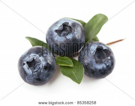 blueberries,. Isolated white