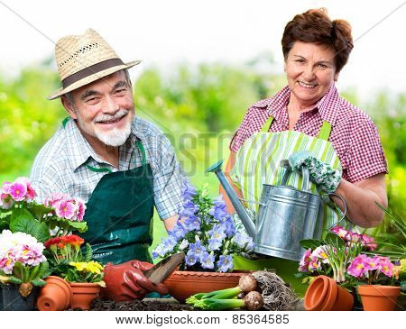 Portrait of senior couple in the flower garden