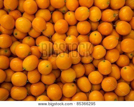 Kumquat (small tangerine)