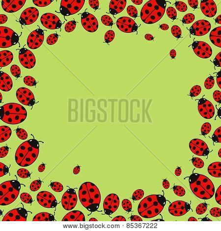 frame with variegated ladybugs