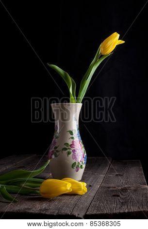 Yellow Tulips Flowers