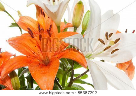 Orange and white bouquet of lilies