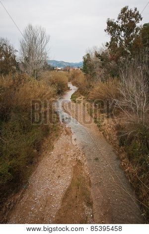 Riverbed Not Far From Ancient Olympia