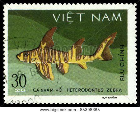 Vintage  Postage Stamp. Heterodontus Zebra.