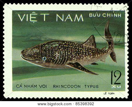Vintage  Postage Stamp. Rhincodon Tipus.