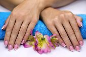 stock photo of french manicure  - Hands with classic french manicure on a blue towel - JPG