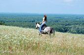 stock photo of tall grass  - girl riding a horse through the tall grass in summer  - JPG