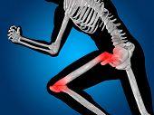 stock photo of knee-cap  - Conceptual 3D human man anatomy or health design - JPG