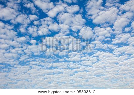 Blue Sky With Fleecy Clouds