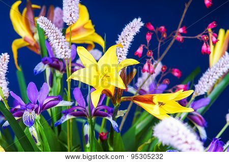 Bunch of summer flowers on a blue background
