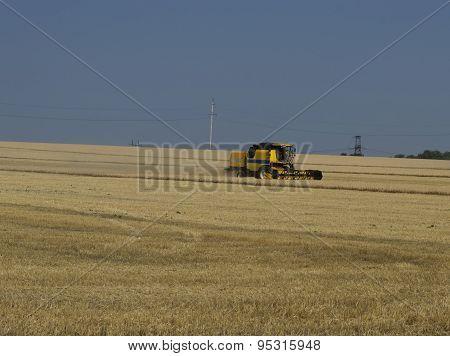 The Farm Vehicle Reaps Wheat Crop