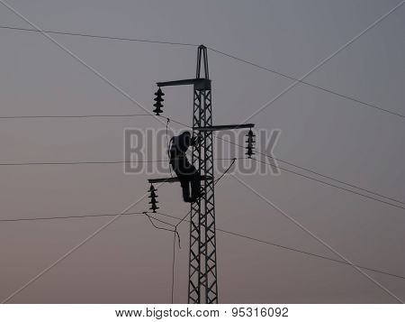 Worker On Power Line Pylon