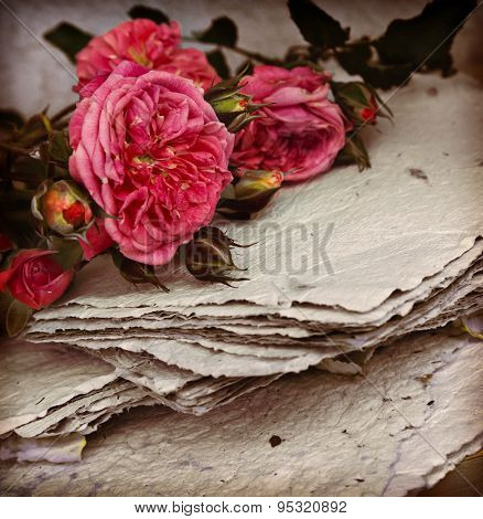 Vintage romantic background with beautiful white roses, petals a