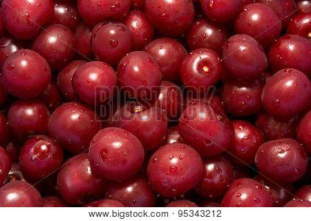 Full frame background of wet cherries