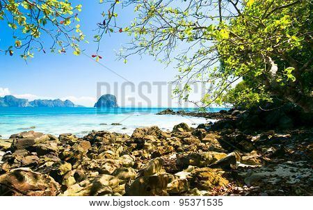 Serenity Shore Harbor Waters
