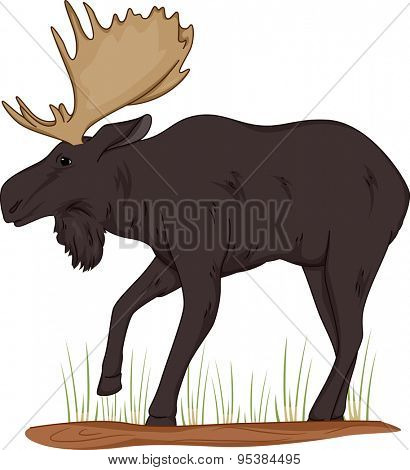 Illustration of a Moose Standing on a Patch of Grass