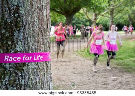 SOUTHAMPTON, UK - JULY 4 : Women gather for the annual Race for Life Pretty Muddy fun run, to raise money for Cancer Research. 4 July 2015 in Southampton, UK.