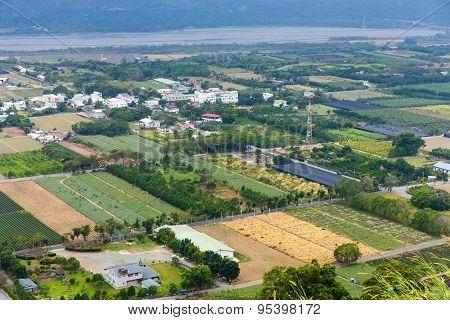 Farm from top in Tai Tung