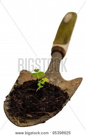 Garden Hand Trowel