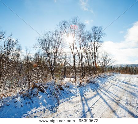 winter landscape with road