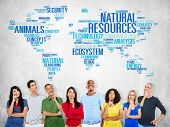 stock photo of nature conservation  - Natural Resources Environmental Conservation Sustainability Concept - JPG