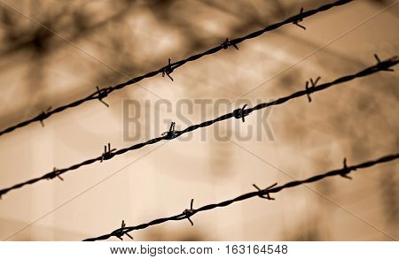 Barbed Wire Lines And Background Blurred With Other Barriers