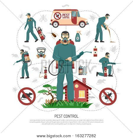 Professional pest control services experts handling all aspects of pest removal flat infographic advertisement poster vector illustration