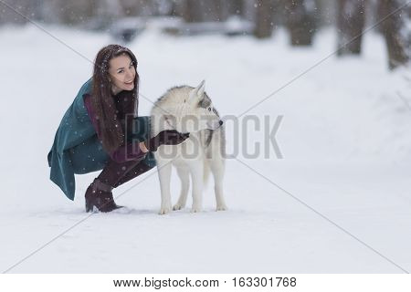 Happy and Smiling Caucasian Brunette Woman Playing with Husky Dog Outdoors in Park. Horizontal Shot