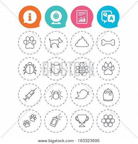 Pets and Insects icons. Dog paw. Cat paw with clutches. Bone, feces excrement and vaccination. Honey, bee and honey comb. Information, question and answer icons. Web camera, report signs. Vector