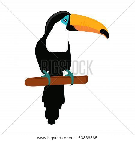 Vector illustration funny toucan sitting on branch. Exotic bird isolated on white background