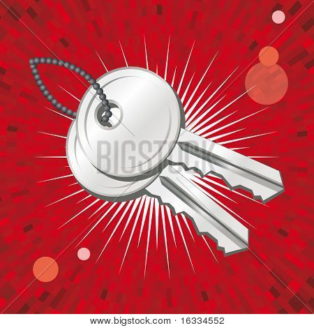 Vector Key icon with shine red  background