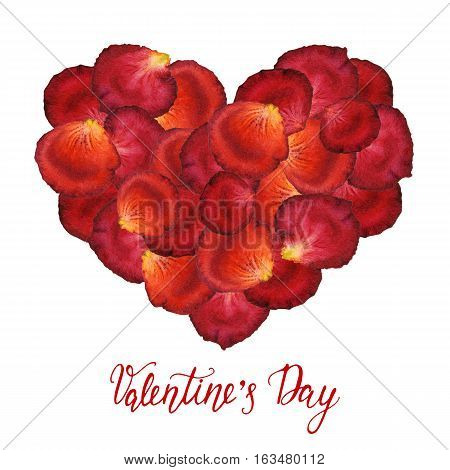 Heart from watercolor red petals of roses and a handdrawn lettering - Valentines Day - on a white background. Hand painted watercolor illustration. Design by flyer, poster, printing, mailing, invitation, card, wedding.