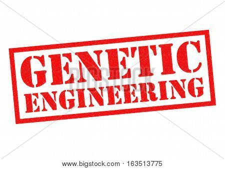 GENETIC ENGINEERING red Rubber Stamp over a white background.