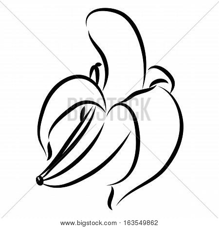 hand drawn peeled banana logo icon in black outline isolated on white background. vector illustration.